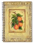 Italian Fruit Apricots Spiral Notebook