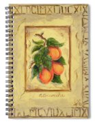 Italian Fruit Apricots Spiral Notebook