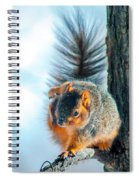 Itchy Dance Spiral Notebook