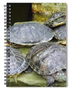 It's A Bit Crowded Here Can We Have Next Meeting At The Conference Room Spiral Notebook