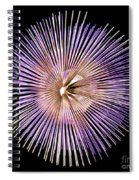 Its A Blast Spiral Notebook