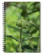 Its A Green World Spiral Notebook