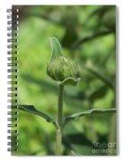 Its A Green World Spiral Notebook