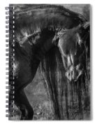 The Mane Thing Spiral Notebook