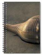 It's Alive - Lightning Whelk Spiral Notebook