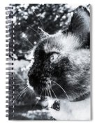 It's All About You Spiral Notebook