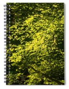 It's Autumn Time Spiral Notebook