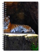 Its Good To Be King Spiral Notebook
