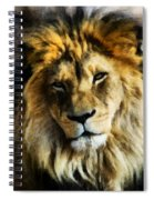 Its Good To Be King Portrait Illustration Spiral Notebook