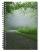 Mystery Walk Spiral Notebook