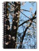 It's Spring 2013 Spiral Notebook