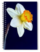It's Spring Spiral Notebook