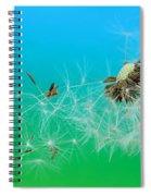 It's Summer Spiral Notebook
