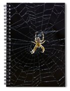 Itsy Bitsy Spider My Ass 2 Spiral Notebook