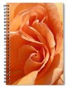I've Got Curves Spiral Notebook