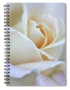 Ivory And Pink Abstract Rose Flower Spiral Notebook