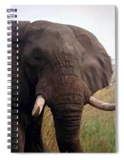 Ivory King Spiral Notebook