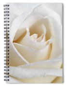 Ivory Rose Flower Spiral Notebook