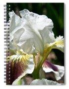 Ivory Sapphire Spiral Notebook