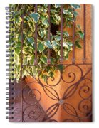 Ivy And Old Iron Gate Spiral Notebook