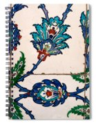 Iznik 22 Spiral Notebook