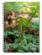 Jack-in-the-pulpit Arisaema Triphyllum Spiral Notebook