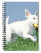 Jack Russell Terrier Dog Spiral Notebook