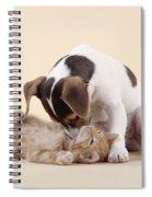 Jack Russell Terrier Puppy And Kitten Spiral Notebook