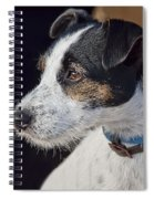 Jack Russell Terrier Spiral Notebook