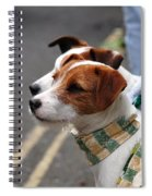 Jack Russell Terriers Spiral Notebook