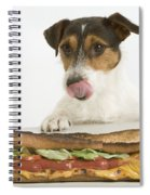 Jack Russell With Sandwich Spiral Notebook