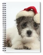 Jack Russell X Westie Pup Wearing Spiral Notebook