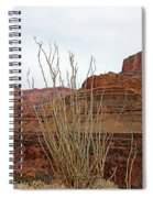 Jacob's Staff Grand Canyon Spiral Notebook