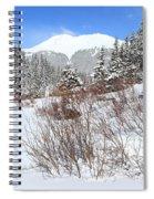 Jacque Peak Spiral Notebook
