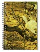 Jade Orchid Spiral Notebook