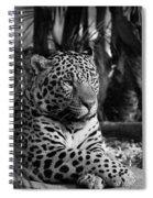 Jaguar Mono Spiral Notebook
