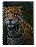 Jaguar Two Spiral Notebook
