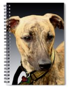 Jake Spiral Notebook