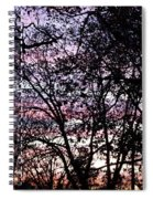 Jammer Cotton Candy Trees Spiral Notebook