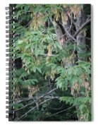 jammer Dripping Seeds Spiral Notebook