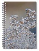 Jammer Fractal Ice 001 Spiral Notebook