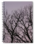 Jammer Fuzzy Trees 002 Spiral Notebook