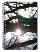 Jammer Lateralus Branching Trees Spiral Notebook