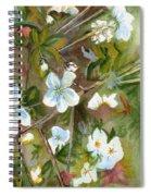 Jane's Apple Blossoms 1 Spiral Notebook