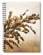 Janice Joplin Spiral Notebook