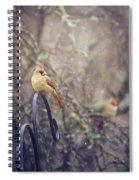 January Cardinals Spiral Notebook