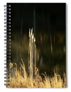 January's Gold 2013 Spiral Notebook