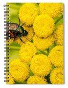 Japanese Beetle She Ruv You Ya Ya Ya Spiral Notebook