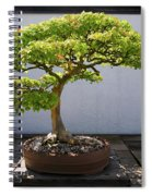 Japanese Bonsai Tree In National Spiral Notebook