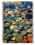 Japanese Garden Pool Rocks Spiral Notebook